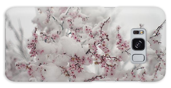 Pink Spring Blossoms In The Snow Galaxy Case