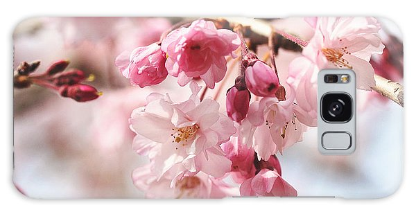 Pink Cherry Blossoms Galaxy Case
