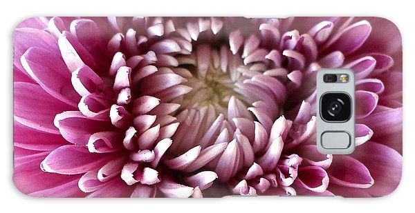 Pink Chrysanthemum Galaxy Case by Venetia Featherstone-Witty