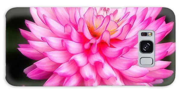 Pink Chrysanths Galaxy Case