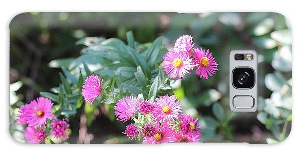 Pink Coneflower Galaxy Case