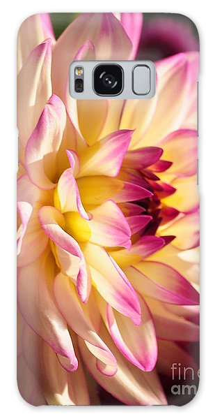 Pink Cream And Yellow Dahlia Galaxy Case