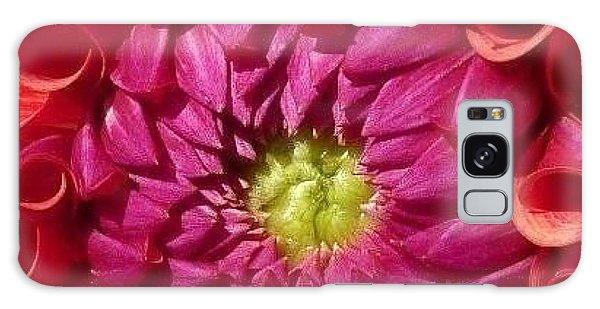 Pink Dahlia Variation Galaxy Case by Susan Garren