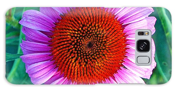 Pink Daisy By Jan Marvin Galaxy Case