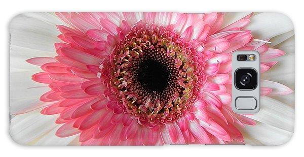 Pink Daisy Flower Galaxy Case