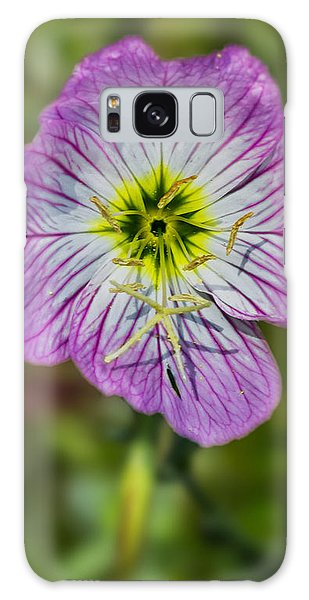 Pink Evening Primrose Galaxy Case