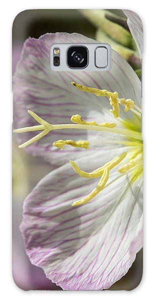 Pink Evening Primrose Flower Galaxy Case