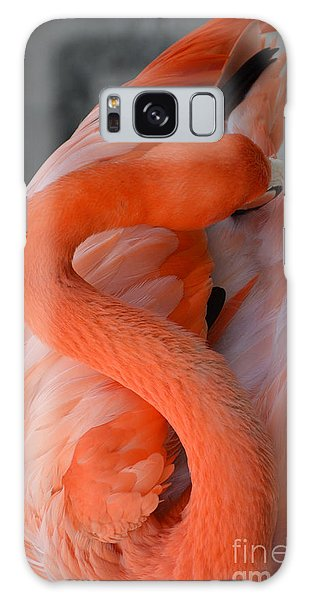 Pink Flamingo Galaxy Case by Robert Meanor