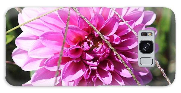 Pink Flower Galaxy Case by Cynthia Snyder