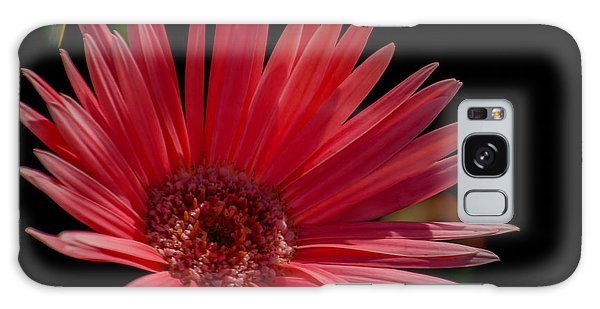 It Professional Galaxy Case - Pink Gerber Daisy by Renee Barnes