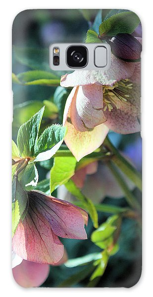 Pink Hellebore Galaxy Case by Gerry Bates