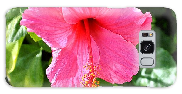 Pink Hibiscus With Large Stamen Galaxy Case by Jay Milo