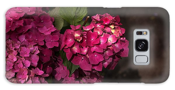 Pink Hydrangea Flowers In A Garden Galaxy Case