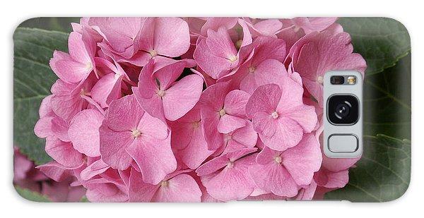 Pink Hydrangea Galaxy Case by Sandy Molinaro