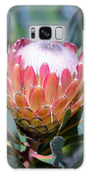 Pink Ice Protea Galaxy Case by Werner Lehmann