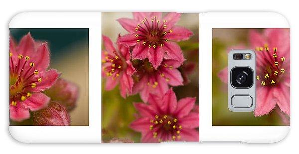 Pink Joy Galaxy Case by Trevor Chriss
