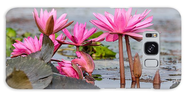 Pink Lotuses Galaxy Case by Fotosas Photography