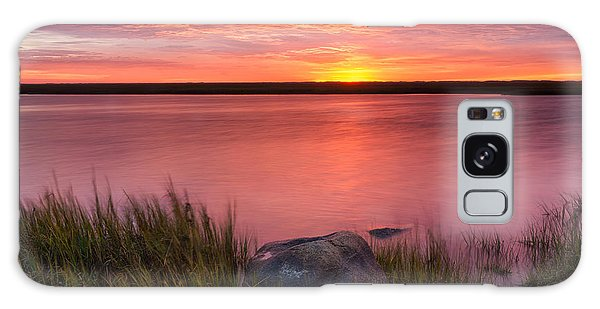 Pink Marsh Galaxy Case