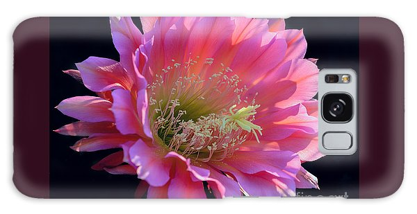 Pink Night Blooming Cactus Flower Galaxy Case