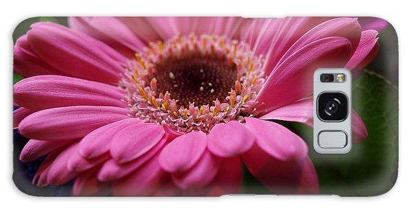 Pink Petal Explosion Galaxy Case