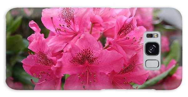 Pink Rhododendron Bloom Galaxy Case