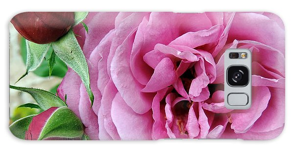 Pink Rose And Buds Galaxy Case