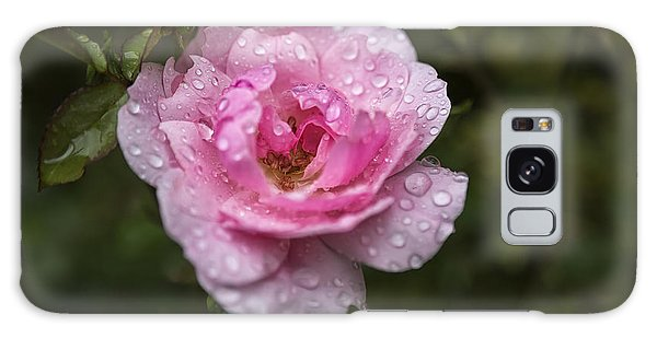 Pink Rose With Raindrops Galaxy Case by Belinda Greb