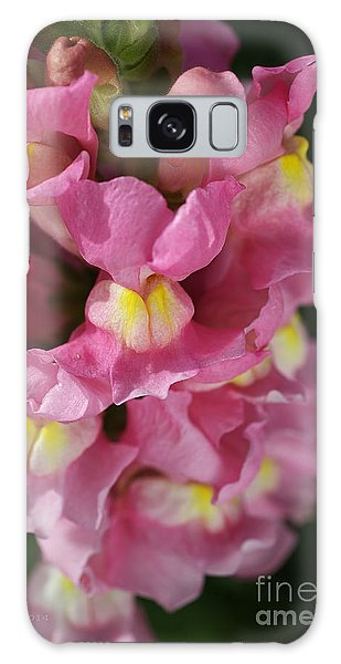 Pink Snapdragon Flowers Galaxy Case by Joy Watson