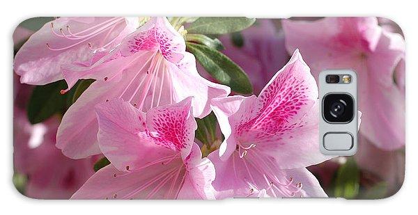 Pink Star Azaleas In Full Bloom Galaxy Case