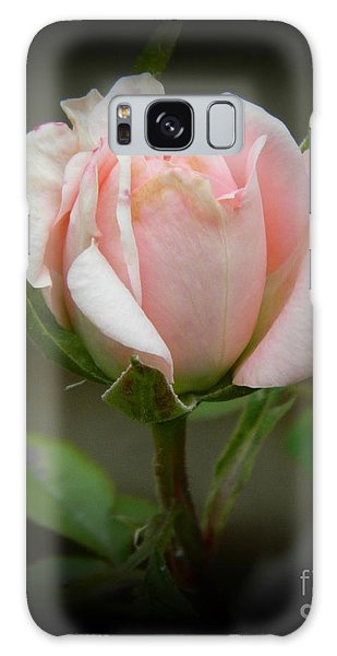 Pink Tea Rose Galaxy Case
