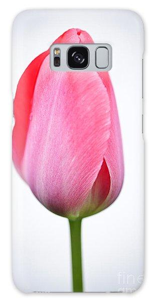 Tulip Galaxy Case - Pink Tulip by Elena Elisseeva