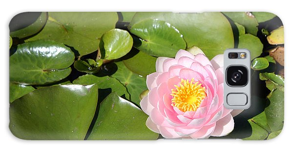 Pink Waterlily Galaxy Case by Gerry Bates
