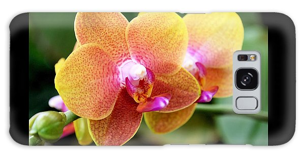 Pink Yellow Orchid Galaxy Case by Rona Black