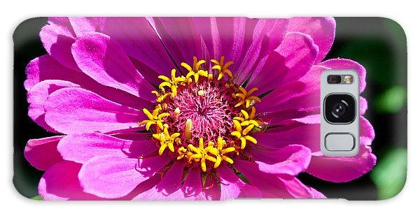 Pink Zinnia Galaxy Case