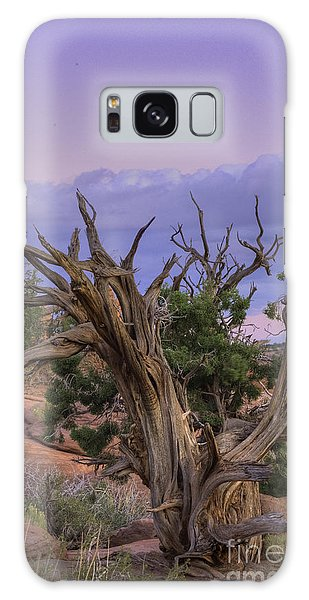 Pinon Pine Galaxy Case