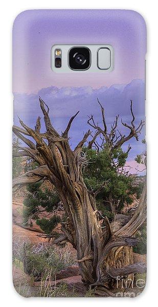 Pinon Pine Galaxy Case