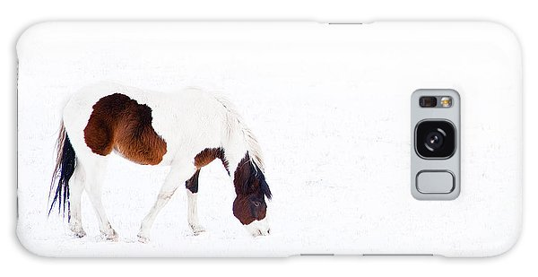Pinto Pony Galaxy Case by Theresa Tahara