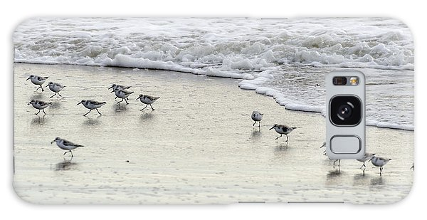 Piping Plovers At Water's Edge Galaxy Case