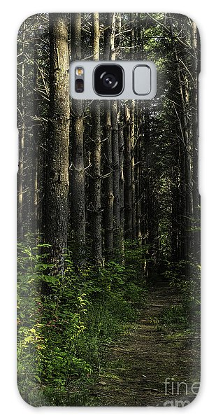 Pisgah Forest Trail Color Galaxy Case