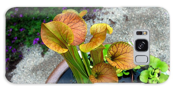 Pitcher Plants Galaxy Case