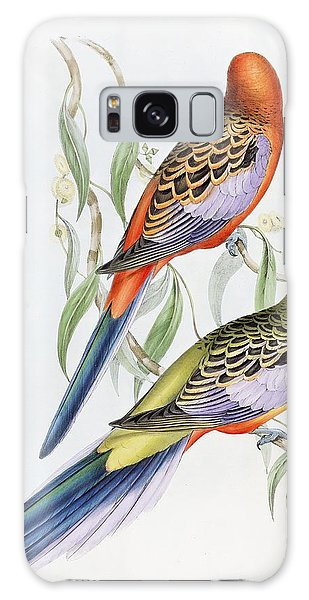 Parakeet Galaxy Case - Platycercus Adelaidae From The Birds Of Australia by John Gould
