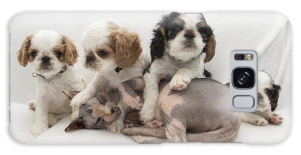 Playful Puppies Galaxy Case