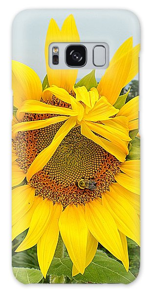 Pleading Sunflower Galaxy Case