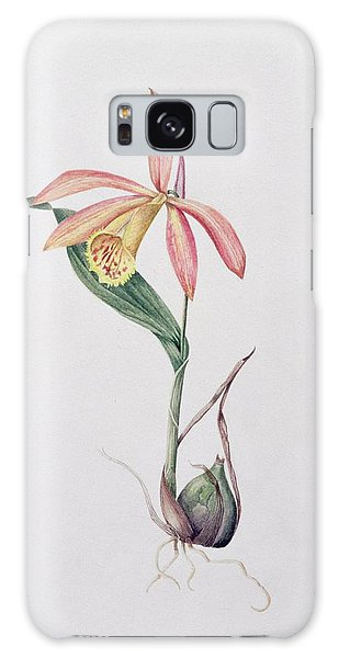 Orchidaceae Galaxy Case - Pleione Zeus Wildstein by Mary Kenyon-Slaney