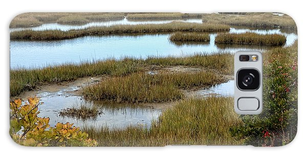Plum Island Marshes In Autumn 2 Galaxy Case