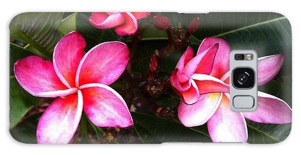 Plumeria Blooms Galaxy Case