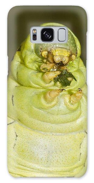 Plump Green Caterpillar Galaxy Case