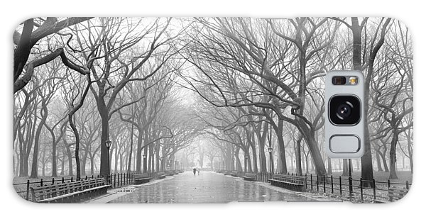 New York City - Poets Walk Central Park Galaxy Case