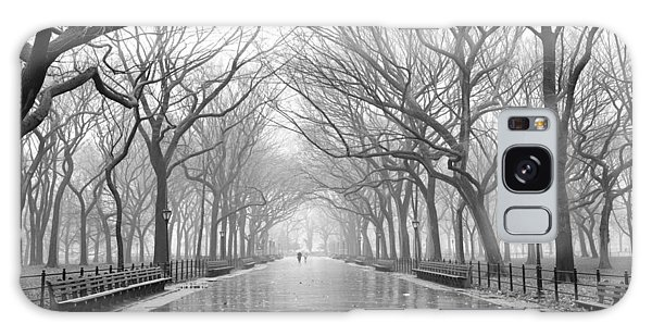 New York City - Poets Walk Central Park Galaxy Case by Dave Beckerman