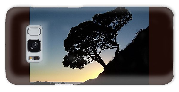 Pohutukawa Trees At Sunrise Galaxy Case by Peter Mooyman